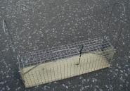 Rattenfalle - Lebendfalle, zweiseitig 10 x 10 x 37 cm