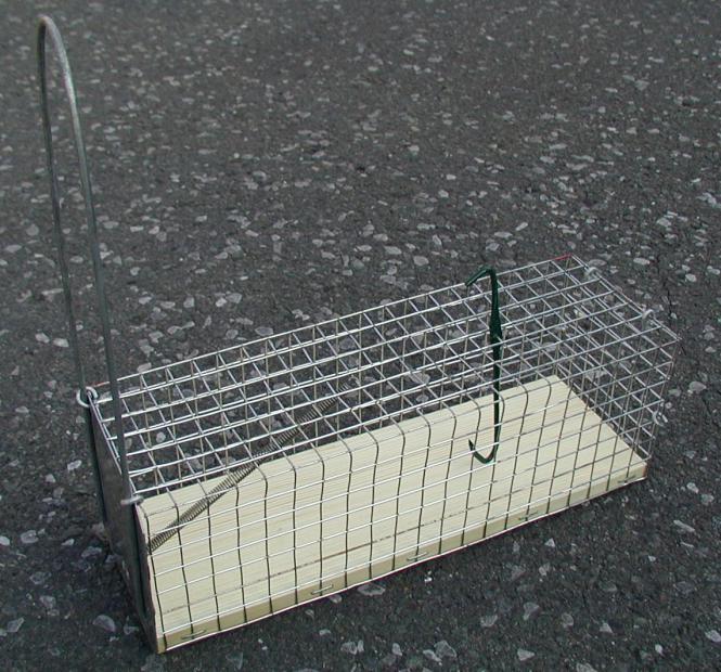 Rattenfalle Lebend-Fang, einseitig 9 x 10 x 27 cm