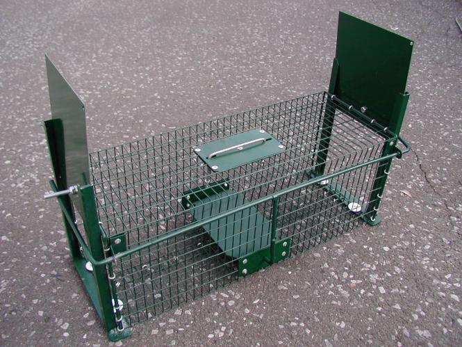 Lebendfalle-Ratte 18 x 18 x 50 cm